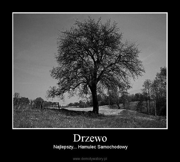 Drzewo –  Najlepszy... Hamulec Samochodowy