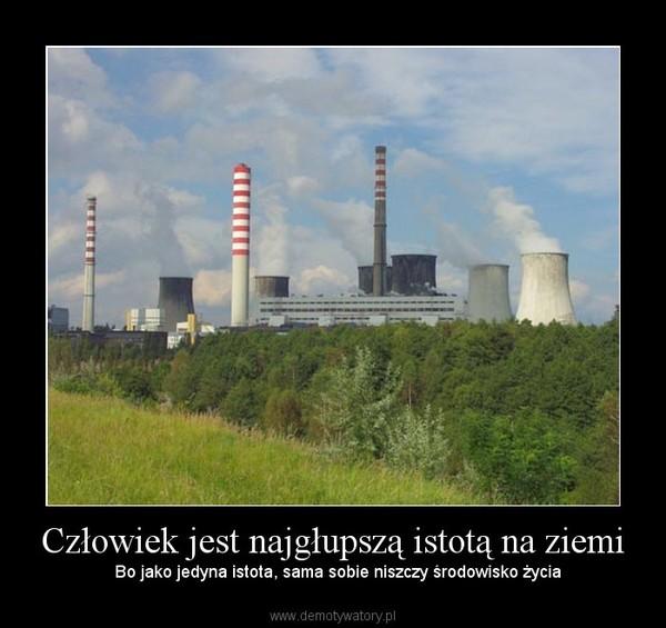 Człowiek jest najgłupszą istotą na ziemi –   Bo jako jedyna istota, sama sobie niszczy środowisko życia