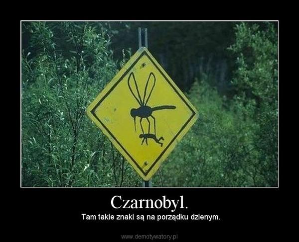 Czarnobyl. –  Tam takie znaki są na porządku dzienym.