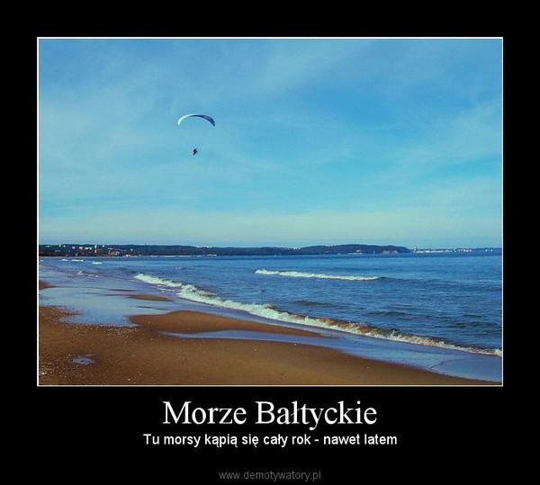 Morze Bałtyckie – Tu morsy kąpią się cały rok - nawet latem