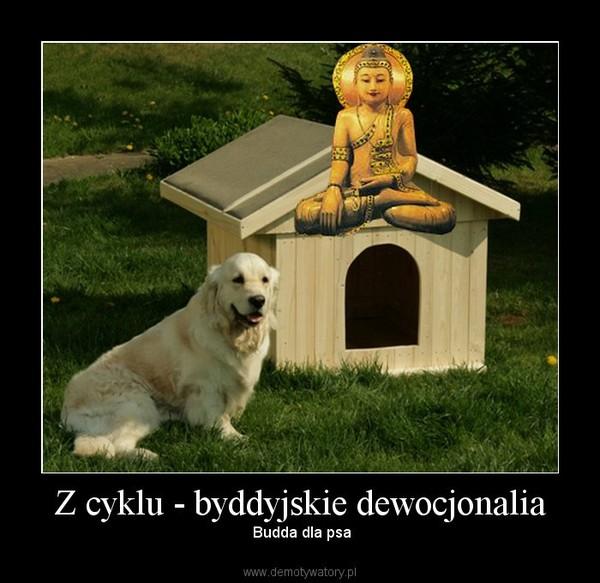 Z cyklu - byddyjskie dewocjonalia –  Budda dla psa