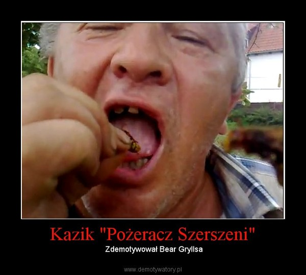 """Kazik """"Pożeracz Szerszeni"""" –  Zdemotywował Bear Gryllsa"""