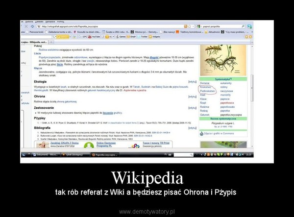Wikipedia – tak rób referat z Wiki a będziesz pisać Ohrona i Pżypis