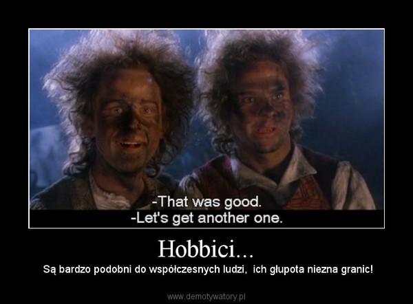 Hobbici... – Są bardzo podobni do współczesnych ludzi,  ich głupota niezna granic!