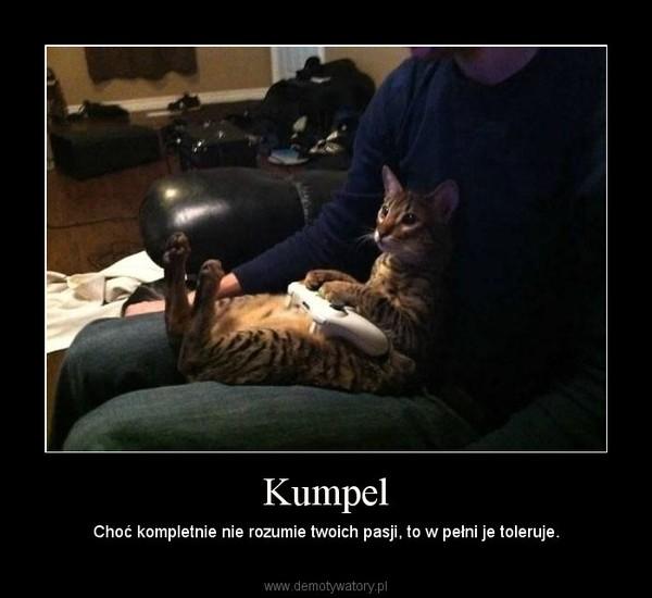 Kumpel – Choć kompletnie nie rozumie twoich pasji, to w pełni je toleruje.