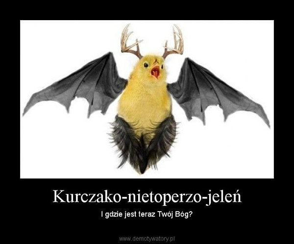 Kurczako-nietoperzo-jeleń – I gdzie jest teraz Twój Bóg?