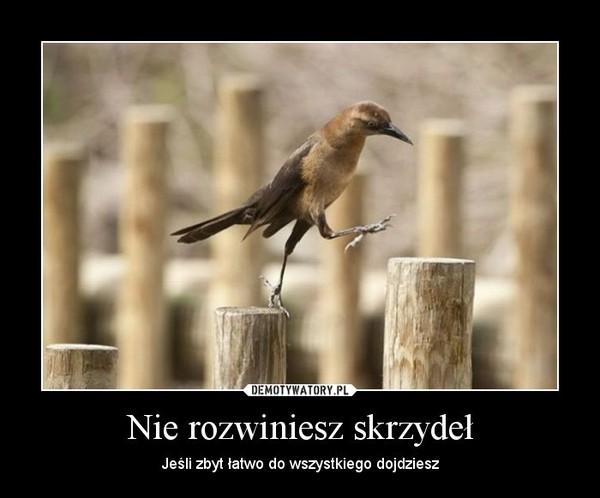 Nie rozwiniesz skrzydeł – Jeśli zbyt łatwo do wszystkiego dojdziesz