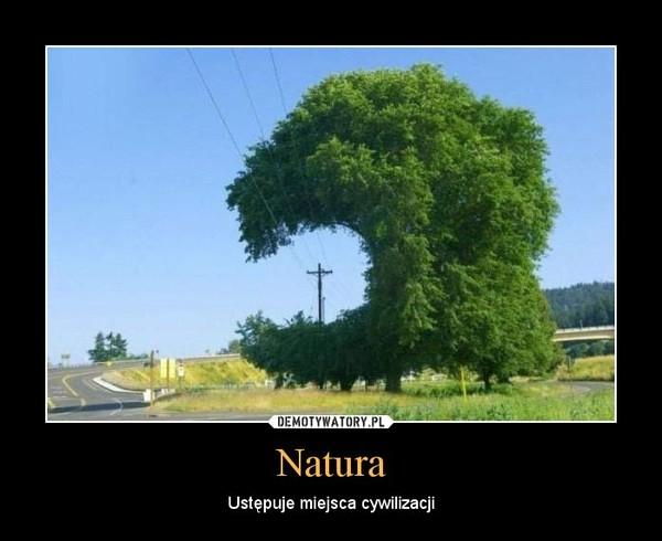 Natura – Ustępuje miejsca cywilizacji