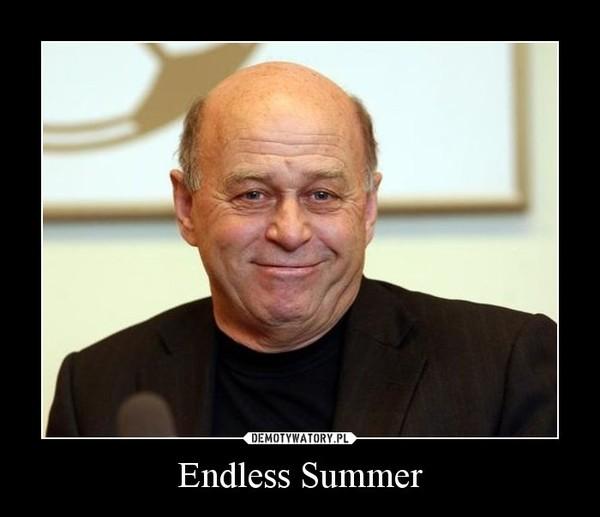 Endless Summer –