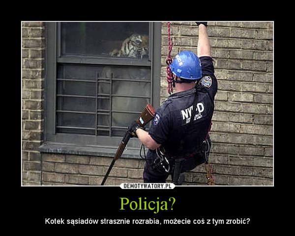 Policja? – Kotek sąsiadów strasznie rozrabia, możecie coś z tym zrobić?
