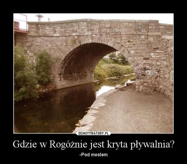 Gdzie w Rogóżnie jest kryta pływalnia? – -Pod mostem