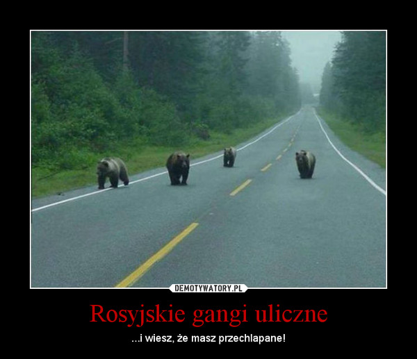 Rosyjskie gangi uliczne – ...i wiesz, że masz przechlapane!
