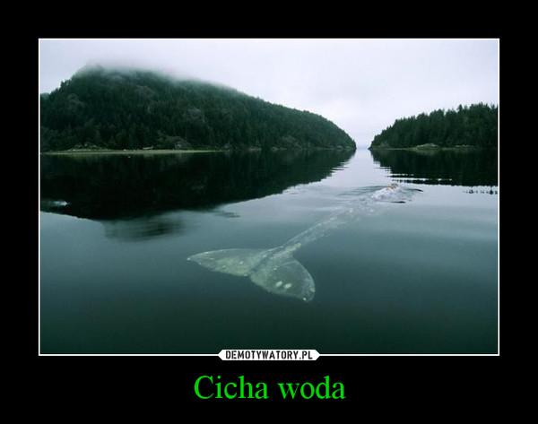 Cicha woda –