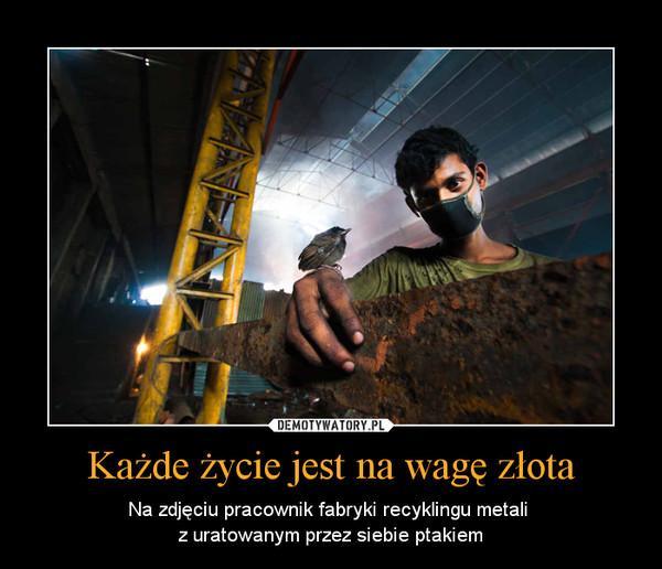 Każde życie jest na wagę złota – Na zdjęciu pracownik fabryki recyklingu metali z uratowanym przez siebie ptakiem