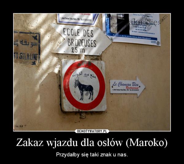 Zakaz wjazdu dla osłów (Maroko) – Przydałby się taki znak u nas.