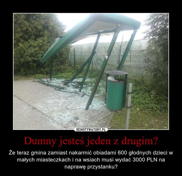 Dumny jesteś jeden z drugim? – Że teraz gmina zamiast nakarmić obiadami 600 głodnych dzieci w małych miasteczkach i na wsiach musi wydać 3000 PLN na naprawę przystanku?