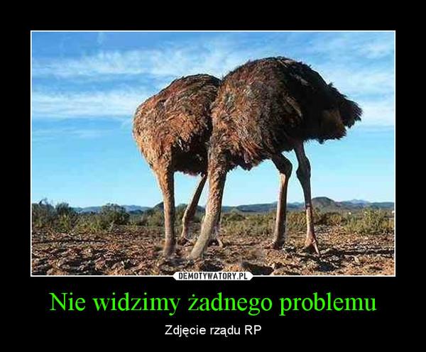 Nie widzimy żadnego problemu – Zdjęcie rządu RP