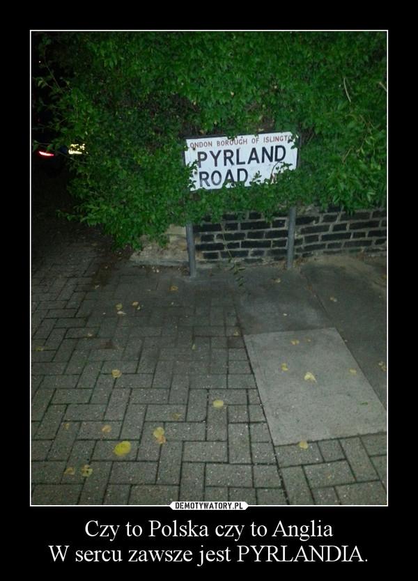 Czy to Polska czy to AngliaW sercu zawsze jest PYRLANDIA. –