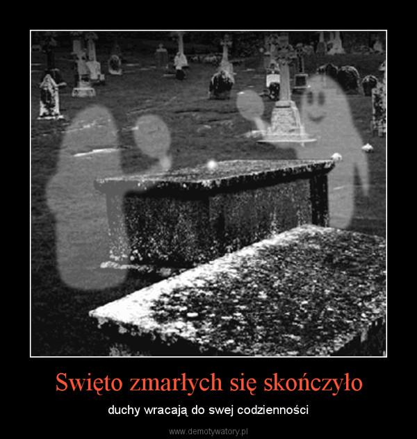 Swięto zmarłych się skończyło – duchy wracają do swej codzienności