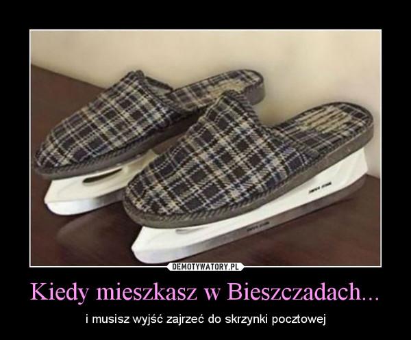 Kiedy mieszkasz w Bieszczadach... – i musisz wyjść zajrzeć do skrzynki pocztowej