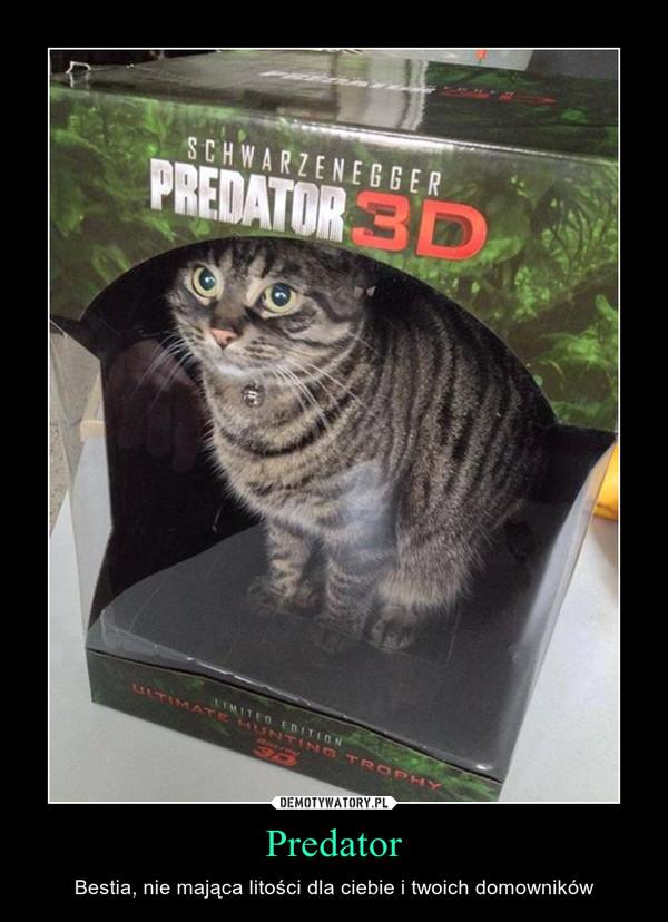 Predator – Bestia, nie mająca litości dla ciebie i twoich domowników