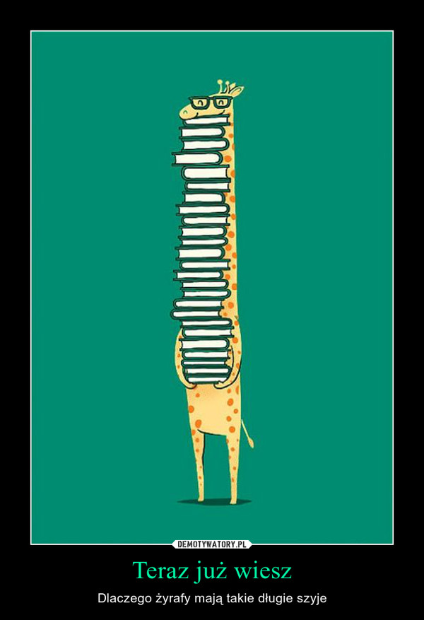 Teraz już wiesz – Dlaczego żyrafy mają takie długie szyje