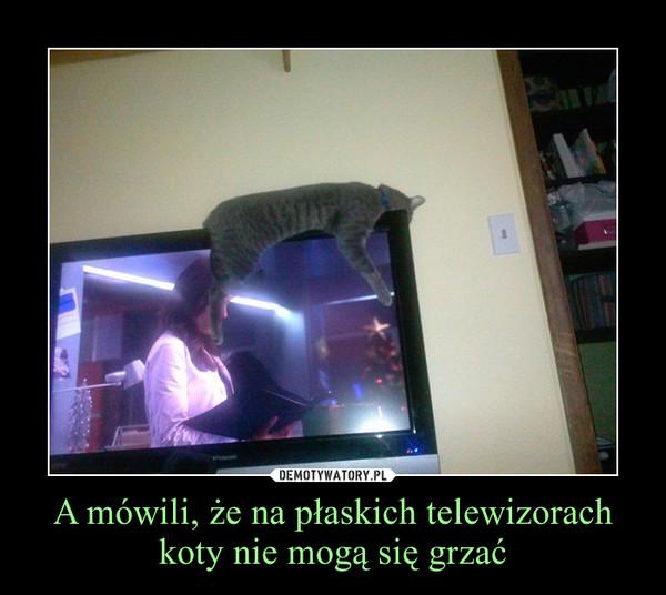 A mówili, że na płaskich telewizorach koty nie mogą się grzać –