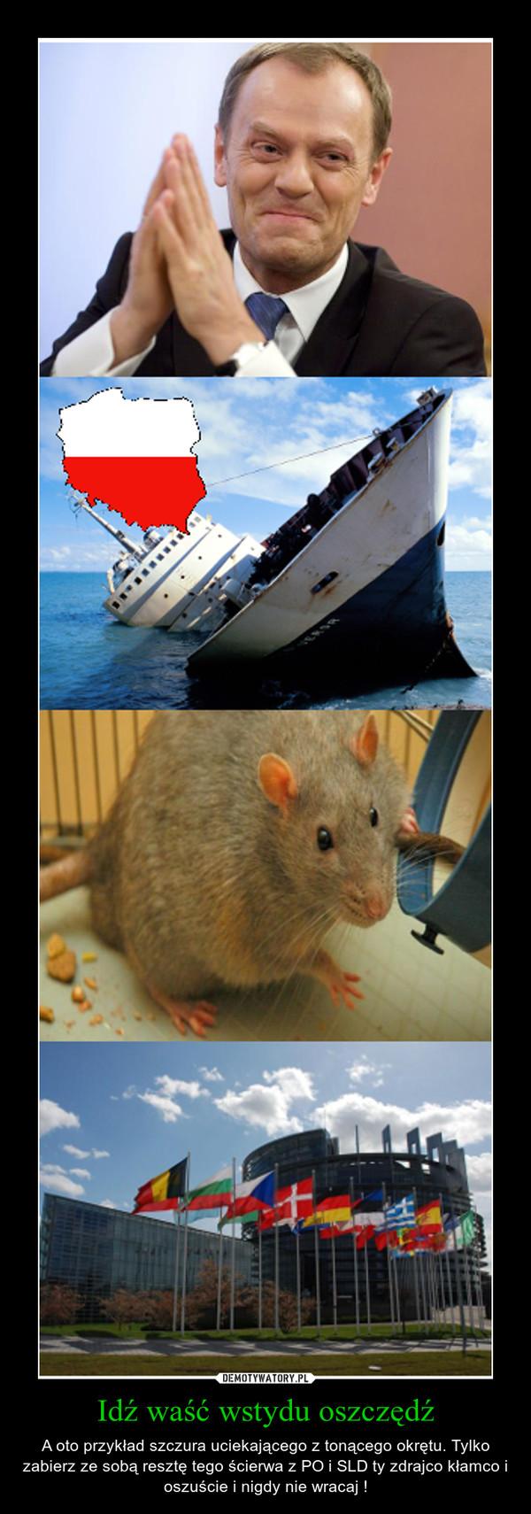 Idź waść wstydu oszczędź – A oto przykład szczura uciekającego z tonącego okrętu. Tylko zabierz ze sobą resztę tego ścierwa z PO i SLD ty zdrajco kłamco i oszuście i nigdy nie wracaj !