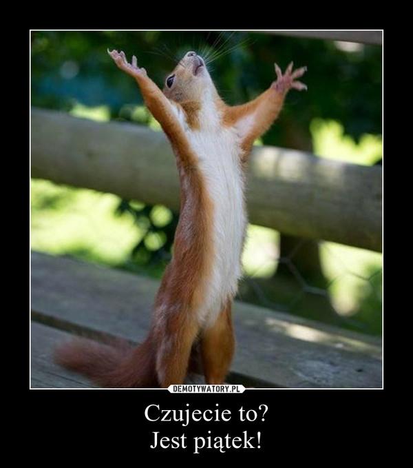 Czujecie to?Jest piątek! –