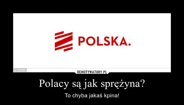 Polacy są jak sprężyna? – To chyba jakaś kpina!