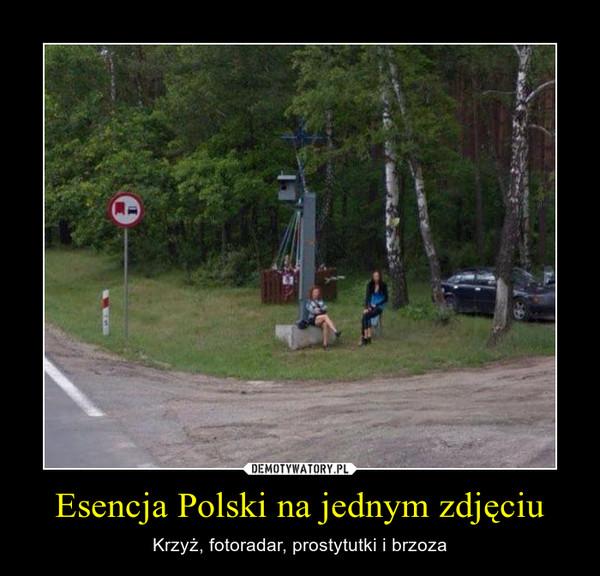 Esencja Polski na jednym zdjęciu – Krzyż, fotoradar, prostytutki i brzoza