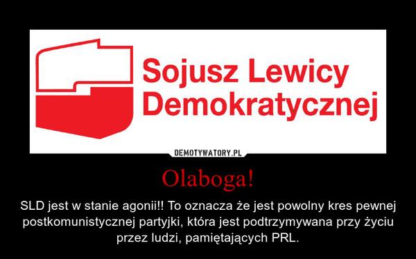 Olaboga! – SLD jest w stanie agonii!! To oznacza że jest powolny kres pewnej postkomunistycznej partyjki, która jest podtrzymywana przy życiu przez ludzi, pamiętających PRL.