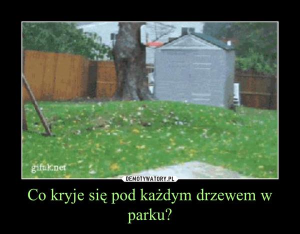 Co kryje się pod każdym drzewem w parku? –