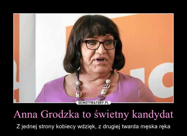 Anna Grodzka to świetny kandydat – Z jednej strony kobiecy wdzięk, z drugiej twarda męska ręka