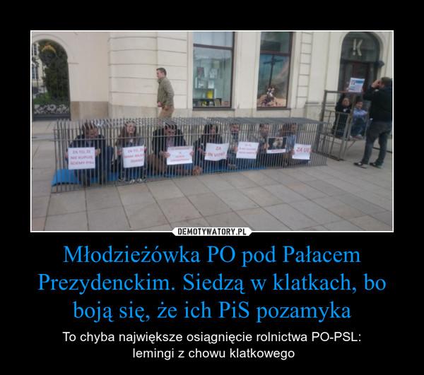 Młodzieżówka PO pod Pałacem Prezydenckim. Siedzą w klatkach, bo boją się, że ich PiS pozamyka – To chyba największe osiągnięcie rolnictwa PO-PSL: lemingi z chowu klatkowego