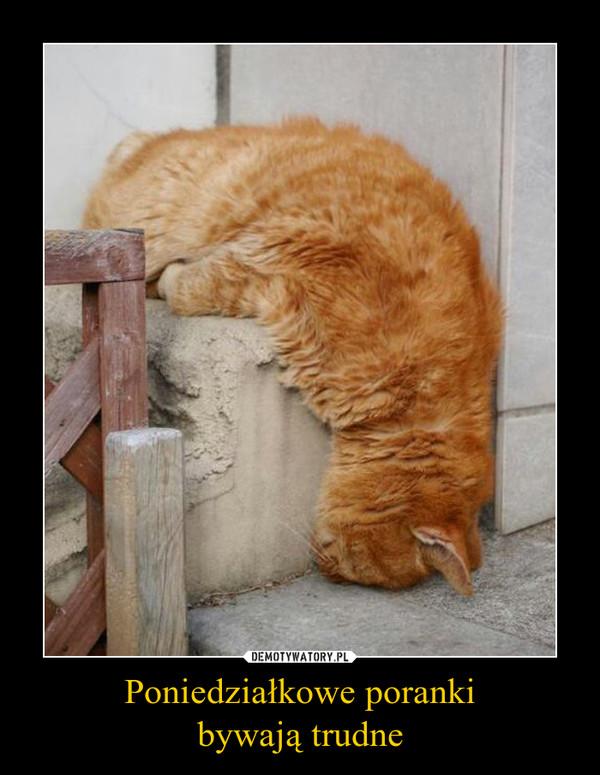 Poniedziałkowe porankibywają trudne –