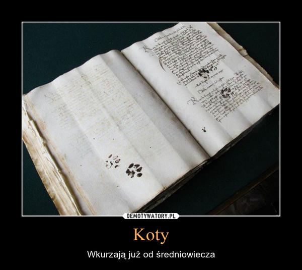 Koty – Wkurzają już od średniowiecza