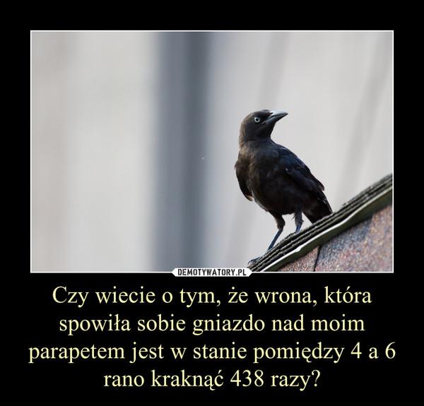Czy wiecie o tym, że wrona, która spowiła sobie gniazdo nad moim parapetem jest w stanie pomiędzy 4 a 6 rano kraknąć 438 razy? –