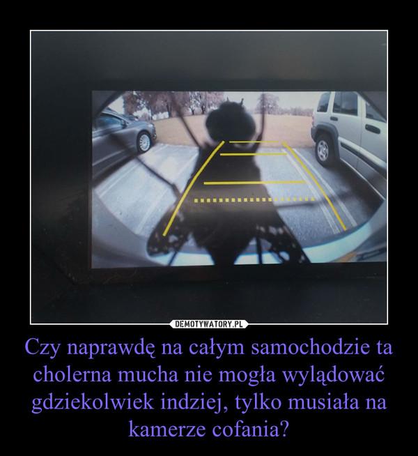 Czy naprawdę na całym samochodzie ta cholerna mucha nie mogła wylądować gdziekolwiek indziej, tylko musiała na kamerze cofania? –