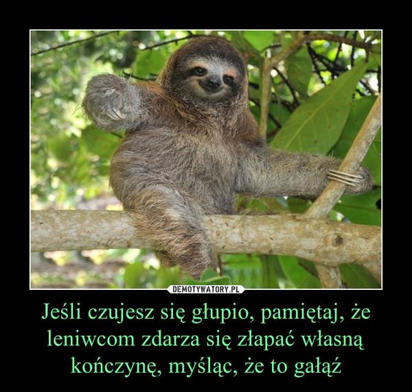 Jeśli czujesz się głupio, pamiętaj, że leniwcom zdarza się złapać własną kończynę, myśląc, że to gałąź –