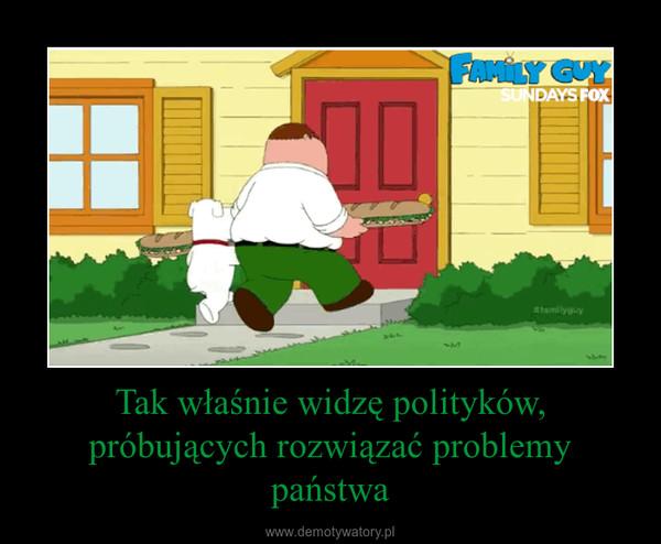Tak właśnie widzę polityków, próbujących rozwiązać problemy państwa –
