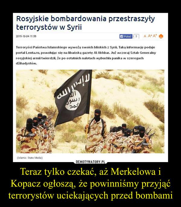 Teraz tylko czekać, aż Merkelowa i Kopacz ogłoszą, że powinniśmy przyjąć terrorystów uciekających przed bombami –