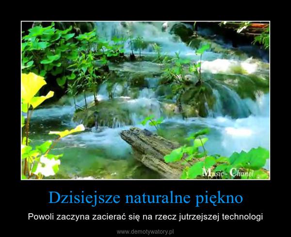 Dzisiejsze naturalne piękno – Powoli zaczyna zacierać się na rzecz jutrzejszej technologi
