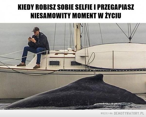 Moment... –  Kiedy robisz sobie selfie i przegapiasz najlepszy moment w życiu