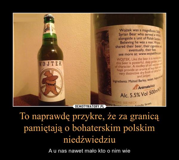 To naprawdę przykre, że za granicą pamiętają o bohaterskim polskim niedźwiedziu – A u nas nawet mało kto o nim wie