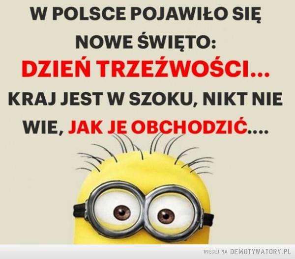 Nowe święto w Polsce: –