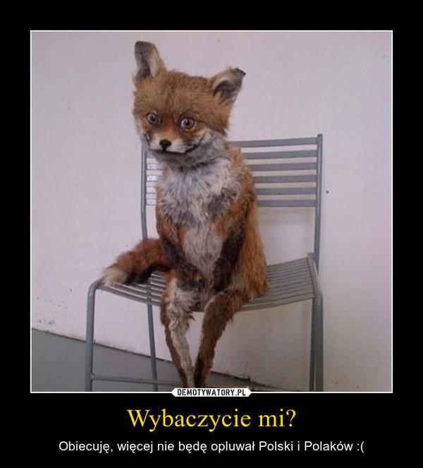Wybaczycie mi? – Obiecuję, więcej nie będę opluwał Polski i Polaków :(