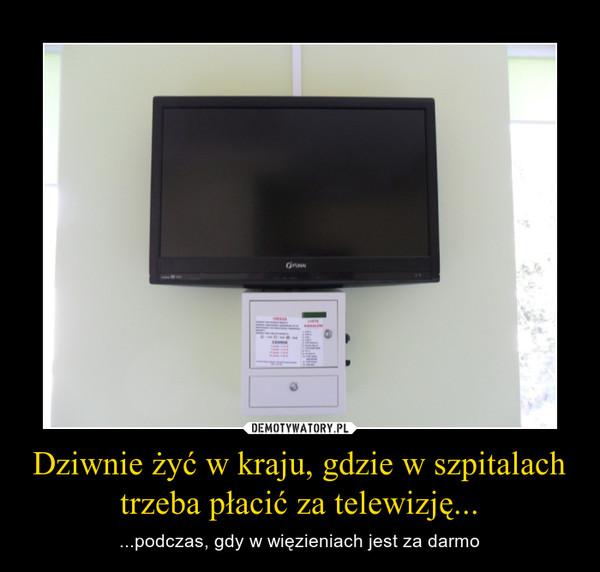 Dziwnie żyć w kraju, gdzie w szpitalach trzeba płacić za telewizję... – ...podczas, gdy w więzieniach jest ona za darmo