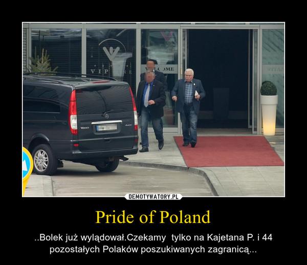 Pride of Poland – ..Bolek już wylądował.Czekamy  tylko na Kajetana P. i 44 pozostałych Polaków poszukiwanych zagranicą...