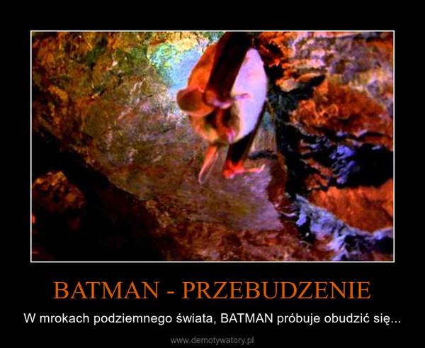 BATMAN - PRZEBUDZENIE – W mrokach podziemnego świata, BATMAN próbuje obudzić się...